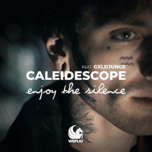 Enjoy The Silence Von Caleidescope Feat. GXLDJUNGE